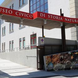 Civico Museo di Storia Naturale, Trieste