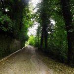Villa Padulli e il suo Parco Monumentale – Cabiate