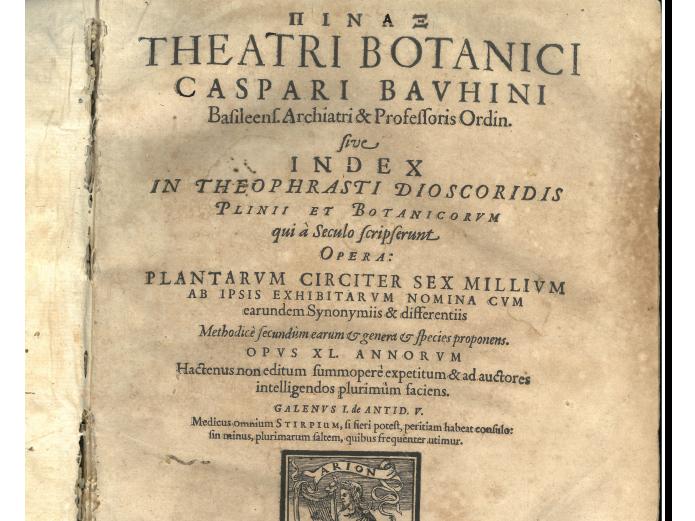 Opera Pinax Theatri Botanici di Bauhin del Comune di Jesi (AN)